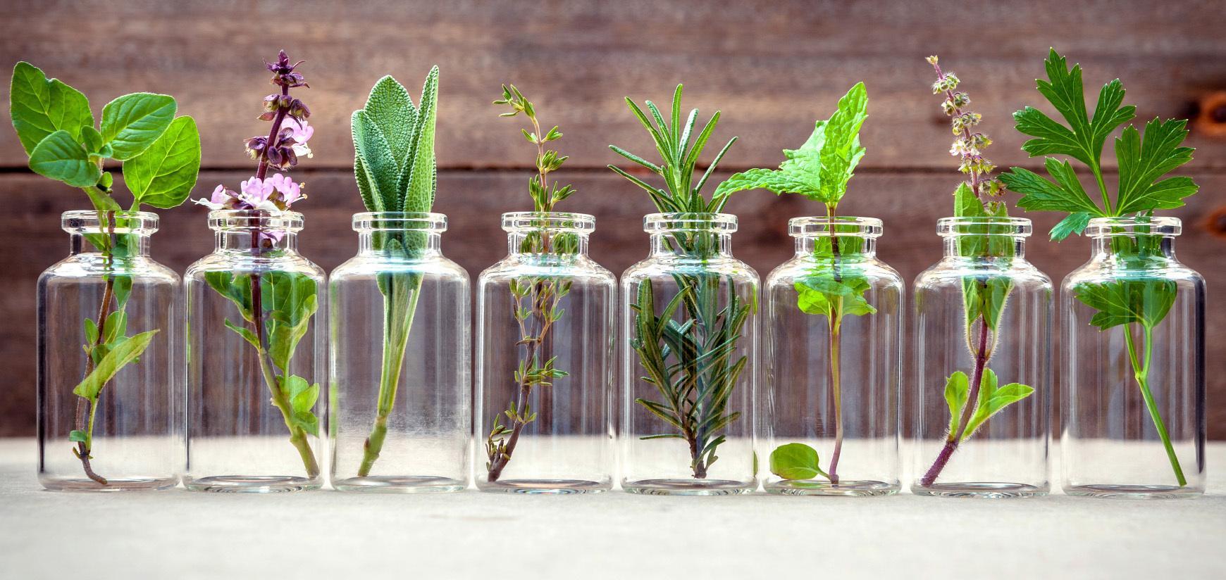 v čem spočívá jedinečnost aromaterapeutické kosmetiky - přírodní kosmetika Nobilis Tilia