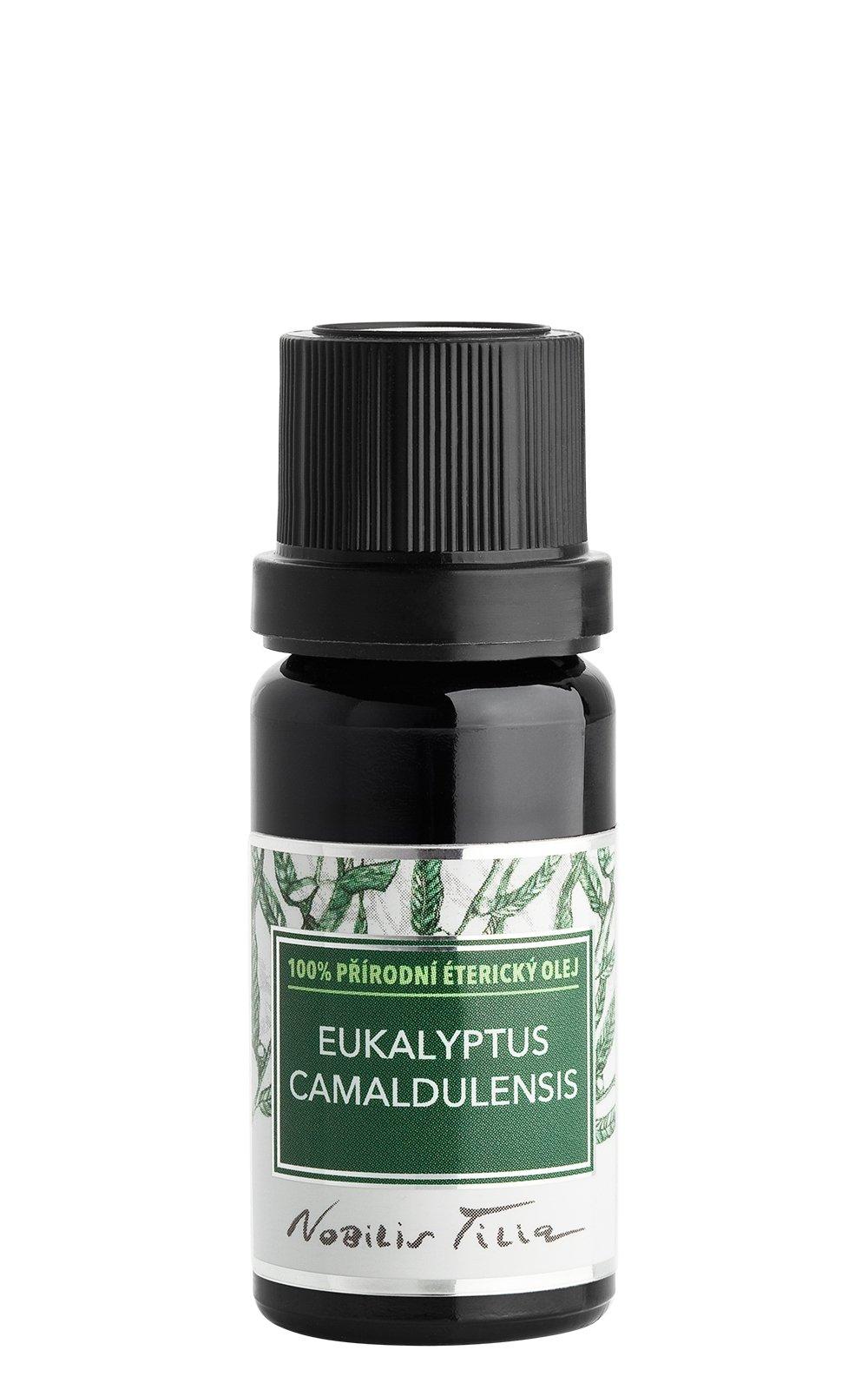 Éterický olej Eukalyptus camaldulensis: 10 ml