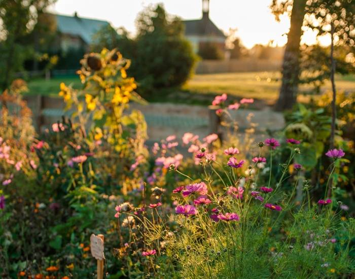 Užijte si zahradu plnou vůní a inspirace